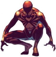 Peter Parker (Earth-616) from Amazing Spider-Man Vol 1 530 0003