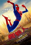 Spider-Man Into the Spider-Verse poster 016