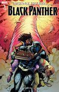 Black Panther (IDW) Vol 1 1