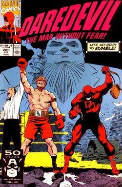 Daredevil Vol 1 289.jpg