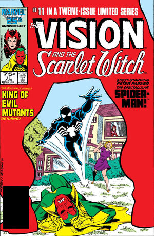 Vision and the Scarlet Witch Vol 2 11.jpg