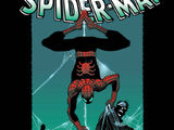 Amazing Spider-Man Vol 2 44