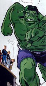Bruce Banner (Earth-5631)