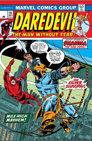 Daredevil Vol 1 111.jpg