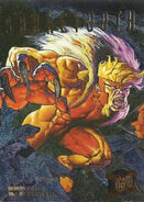 Victor Creed (Earth-616) from Ultra X-Men (Trading Cards) 1995 Hunters & Stalkers 0001