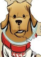 Cosmo (Dog) (Earth-97161) from Guardians Team-Up Vol 1 5 001.jpg