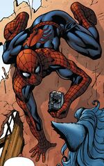 Peter Parker (Earth-22795)