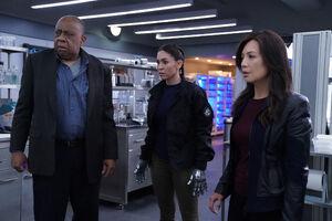 Marvel's Agents of S.H.I.E.L.D. Season 6 1.jpg