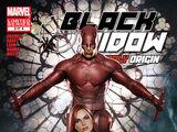 Black Widow: Deadly Origin Vol 1 3
