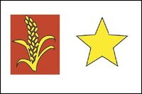 Flag of Sin-Cong from Marvel Atlas Vol 1 1 001.jpg