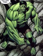 Bruce Banner (Earth-2713)