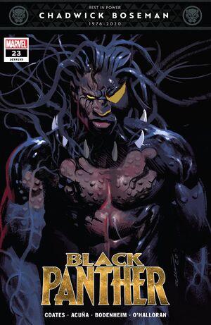 Black Panther Vol 7 23.jpg