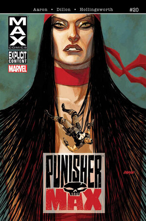 Punishermax Vol 1 20.jpg