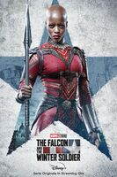The Falcon and the Winter Soldier poster ita 009