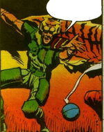 Tiger (Barry) (Earth-5555)