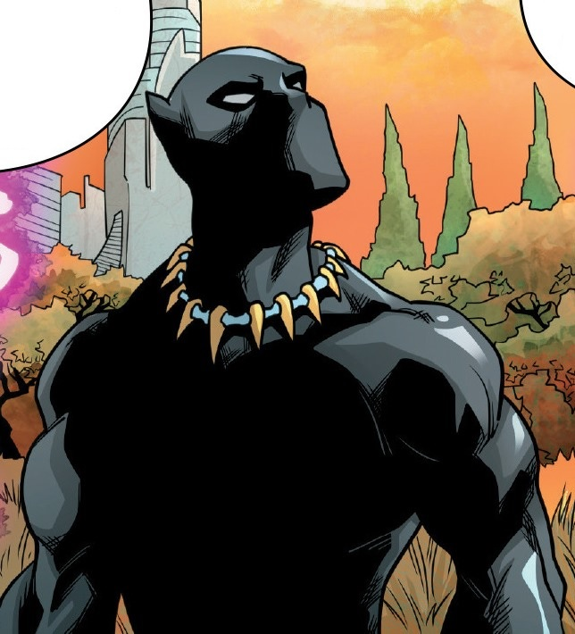 T'Challa (Earth-92131)