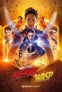 Ant-Man and the Wasp (film) poster 012