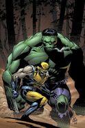 Incredible Hulk Vol 2 80 Textless