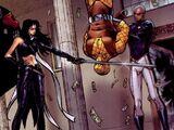 Hawkeye's Sword