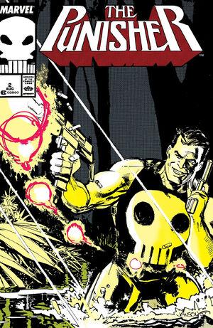 Punisher Vol 2 2.jpg