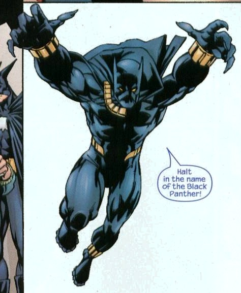 T'Challa (Earth-3131)