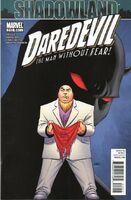 Daredevil Vol 1 510