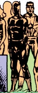 T'Challa (Earth-90659)