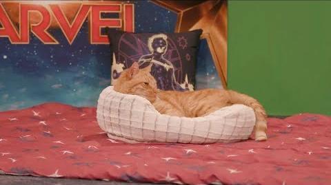 Marvel Studios' Captain Marvel - Goose the Cat LIVE!