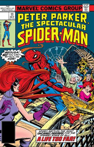Peter Parker, The Spectacular Spider-Man Vol 1 11.jpg