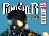 Punisher Vol 9 14