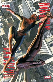Daredevil Spider-Man Vol 1 2.jpg