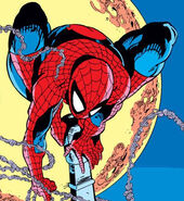 Peter Parker (Earth-616) from Amazing Spider-Man Vol 1 303 001