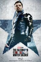 The Falcon and the Winter Soldier poster ita 004