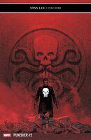Punisher Vol 12 5