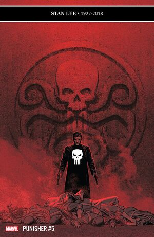 Punisher Vol 12 5.jpg