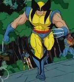 Wolverine (Logan) (Earth-121193)
