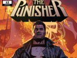 Punisher Vol 12 12