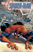 Spectacular Spider-Man Vol 2 3