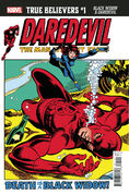 True Believers Black Widow & Daredevil Vol 1 1