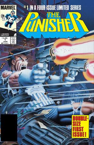 Punisher Vol 1 1.jpg