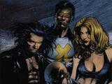 X-Men Unlimited Vol 1 34