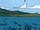 Isla de Tiburon