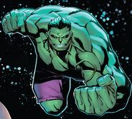 Bruce Banner (Earth-616) from Avengers No Road Home Vol 1 8 001