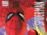 Daredevil/Spider-Man Vol 1 1