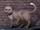 Mister Kitty (Earth-616)