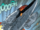 Kree Warbird