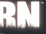 Born Vol 1
