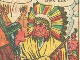 Apache Nation