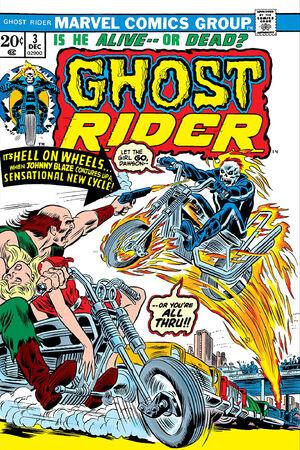 Ghost Rider Vol 2 3.jpg