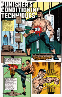 Frank Castle (Earth-616) from Punisher War Zone Vol 1 23 001